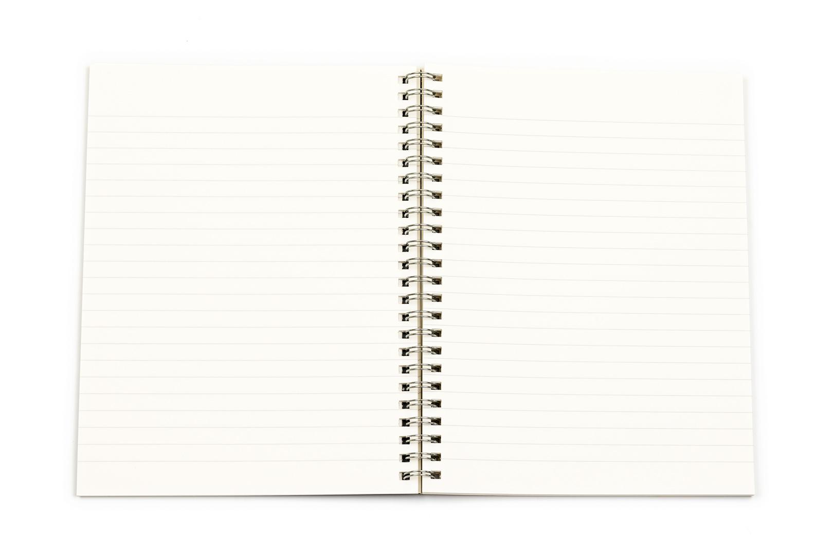 fabriano ecoqua a5 wirebound lined notebook scribe market
